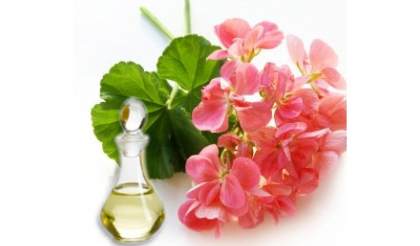 Letting The Anxiety Fly Away With Geranium Essential Oil