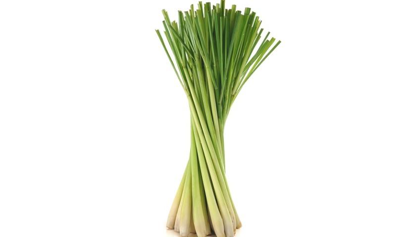 Aromatic Lemongrass Essential Oil