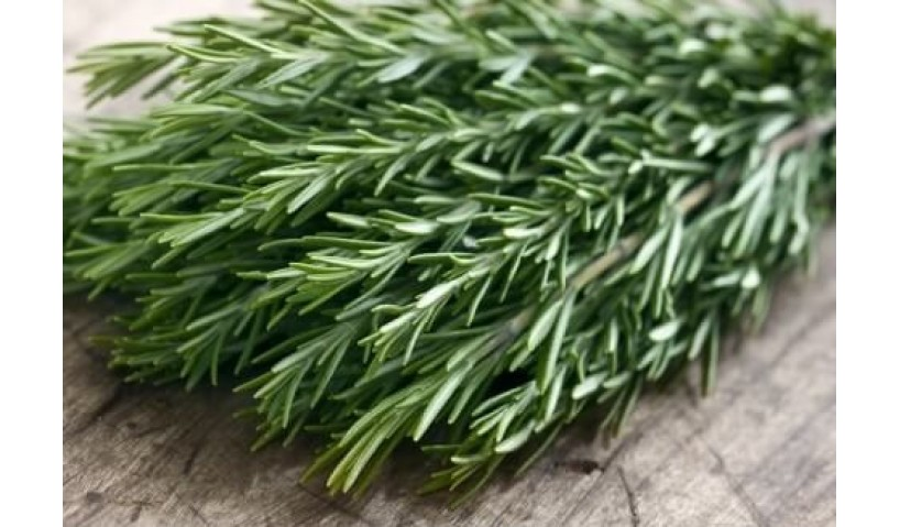 The Magic Of The Naturally Made Rosemary Oil