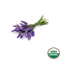 Lavender Essential Oil, ORGANIC