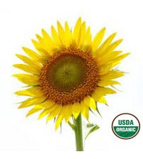 Sunflower Seed Oil, ORGANIC