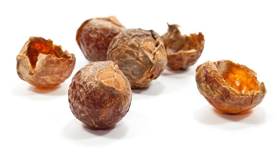 Soap Nuts FAQ's   Passionate Homemaking