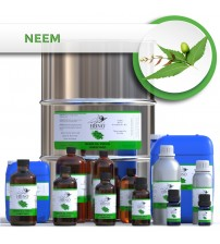 Neem Oil Virgin, Unrefined