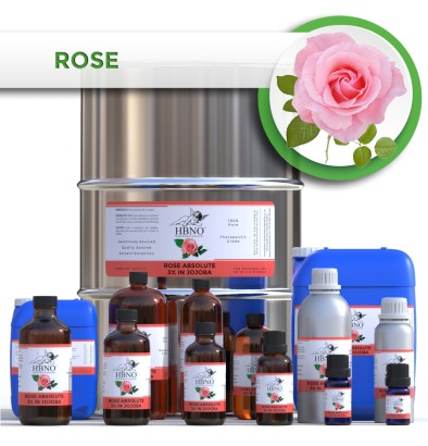 Rose Absolute 3% in Jojoba