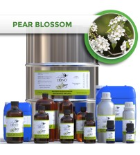 Anjou Pear Blossom Fragrance NATURAL