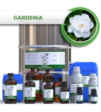 Gardenia Fragrance, NATURAL