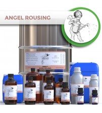 HBNO™ Angel Rousing