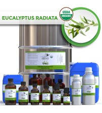 Eucalyptus Radiata, ORGANIC Essential Oil