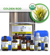 Organic Golden Rod Floral Water
