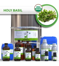 Holy Basil (Tulsi) Essential Oil ORGANIC