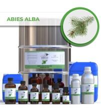 Abies alba (Silver Fir) Essential Oil