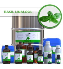 Basil Linalool Essential Oil
