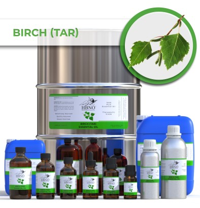 Birch (Tar) Essential Oil