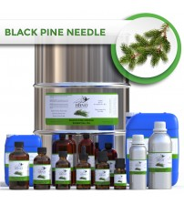 Black Pine Needle Oil
