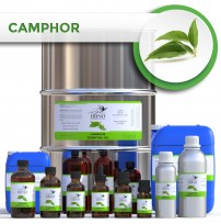Camphor (White) Essential Oil