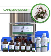 Cape Snowbush Essential Oil
