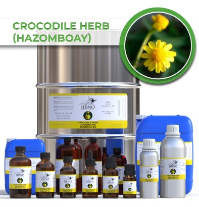 Crocodile Herb (Hazomboay) Essential Oil