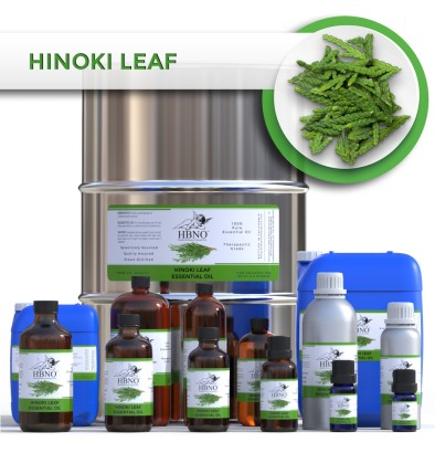 Hinoki Leaf Essential Oil