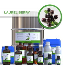 Laurel Berry Essential Oil (Sugandh Kokila)