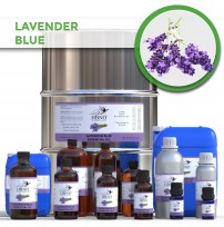 Lavender Blue Essential Oil