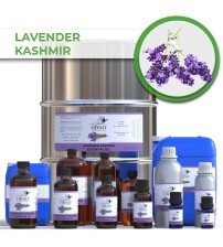 Lavender Kashmir Essential Oil