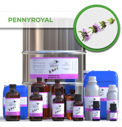 Pennyroyal Essential Oil