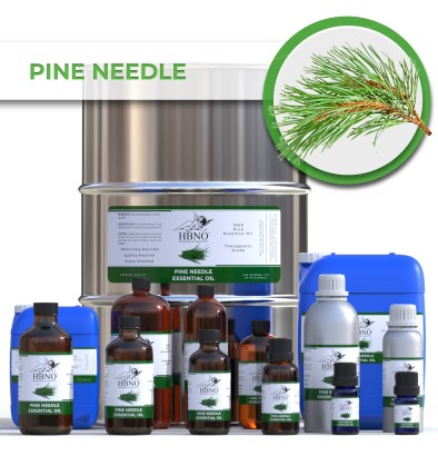Pine Needle Essential Oil