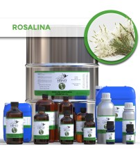 Rosalina Essential Oil (Northern)