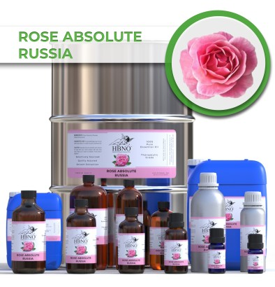 Rose Absolute Russia