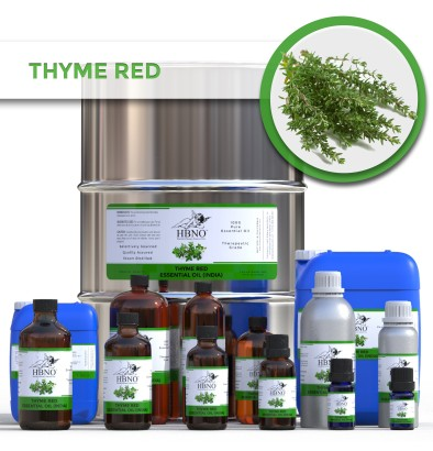 Thyme Red Essential Oil, INDIA