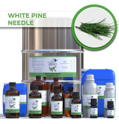 White Pine Needle Essential Oil
