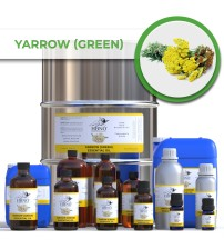 Yarrow (Green) Essential Oil